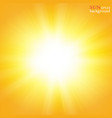 summer background with a magnificent summer sun vector image