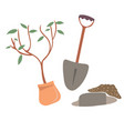 tree planting flat vector image