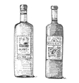 Wine bottle hand drawn engraved old looking vector image vector image