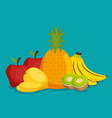group of fresh fruits vector image