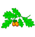 oak branch vector image