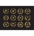 Premium quality laurel wreath collection vector image
