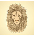 Sketch cute lion in vintage style vector image vector image