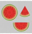 watermelon set vector image vector image