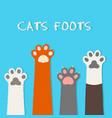 cat flat design prints cartoon cute cat vector image