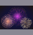 colorful bright fireworks on night sky celebrate vector image vector image
