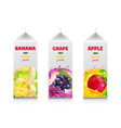 juice package set carton juice containers vector image vector image