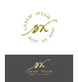 s x handdrawn brush monogram calligraphy logo vector image