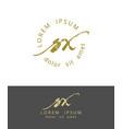 s x handdrawn brush monogram calligraphy logo vector image vector image