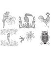 set doodle outline birds toucan owl vector image vector image