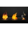 Flames set vector image