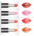 Set of different colors of lipstick vector image vector image
