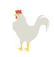 The Rooster looks vector image vector image