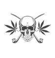 vintage monochrome skull with crossbones isolated vector image vector image