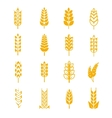 Wheat ears bread symbols vector image vector image