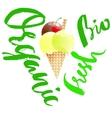 Organic ice cream Eco dessert Fresh food vector image vector image