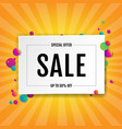 sale banner with ball vector image vector image