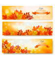 three abstract autumn banners with colorful leaves vector image vector image