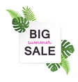 big summer sale banner with tropical leaves vector image vector image
