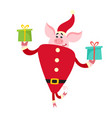 cute pig in santa costume with gifts isolated on vector image vector image