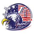 eagle character great america vector image vector image