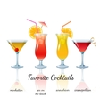 Favorite cocktails set isolated vector image vector image