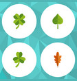 flat icon foliage set of linden leafage hickory vector image vector image
