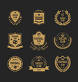 football club badge set - royal shield shape vector image vector image