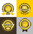 Satisfaction guaranteed and premium quality gold vector