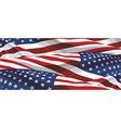 USA FLAGS BACKGROUND vector image vector image