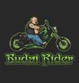 budai rider vector image