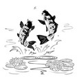 two carp jump out from water after a dragon-fly vector image vector image