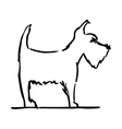 terrier dog vector image