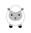 adorable sheep in modern flat style vector image