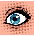 Beautiful female eye with make-up vector image vector image
