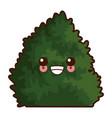 bush plant isolated cute kawaii cartoon vector image vector image