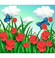 Butterflies in the garden vector image
