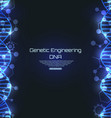 dna texture science template genetic engineering vector image