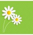 Flora Daisyl Design vector image vector image