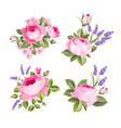 set blooming flowers for your design vector image vector image