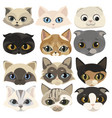 set cats face collection cartoon kittens of vector image vector image