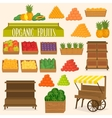 Set for street markets in fruits vector image