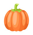 stylized pumpkin vector image vector image