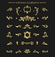 vintage ornaments vignettes set floral elements vector image vector image