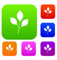 cherry leaves set color collection vector image