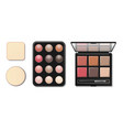 eyeshadow makeup shaping palette realistic 3d vector image vector image