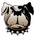guard dog face vector image