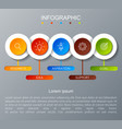 iinfographicfor cycle diagram with 5 concept vector image vector image