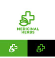medicinal herbs logo cross leaves pharmacy vector image