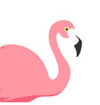pink flamingo exotic bird cool flamingo vector image vector image